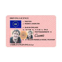 RODNEY REPLICA DRIVING LICENCE